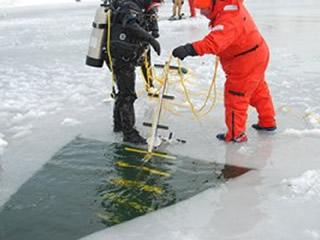 Penguin Ice Ladder